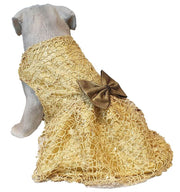 Designer Sequined Wedding/Festive Traditional Lace Dress/Frock For Dogs