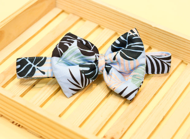 Tropical Rush Bow And Bandana For Dogs