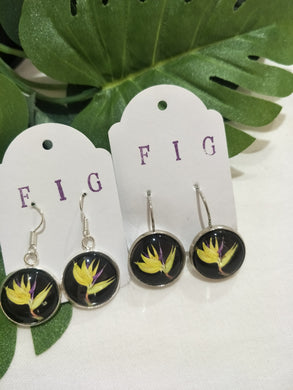 Art Glass Earrings - Tropical Paradise Flower on Black Background
