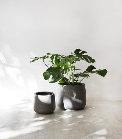 Belle Planter / Squat / Dark Grey / Small