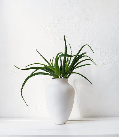 Papaya / Thea Vase / Small