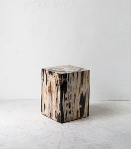 Petrified Wood Side Table / Square / Medium