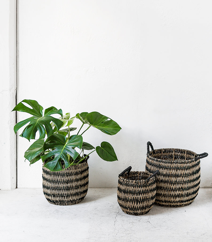 Pattaya Woven Basket / Medium