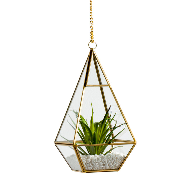 GLASS HANGING TERRARIUM