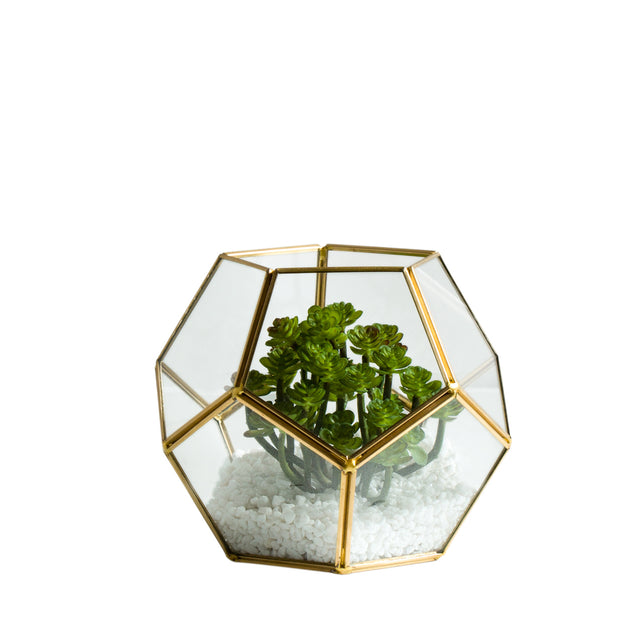 GLASS SPHERE TERRARIUM 6""