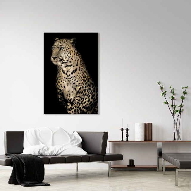 Nobility | stretched canvas wall art