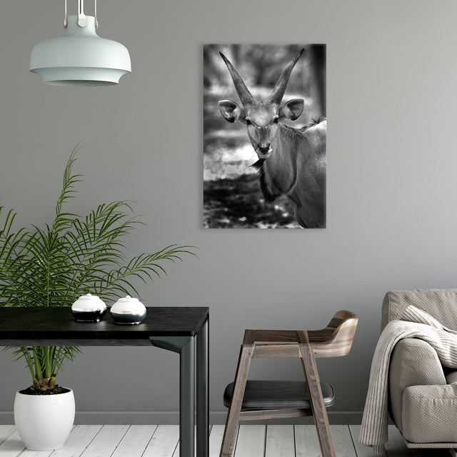 Ready for My Close Up by Mitchell Bloch | stretched canvas wall art