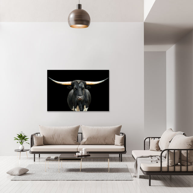 Black and White Longhorn by Adam Mowery | stretched canvas wall art