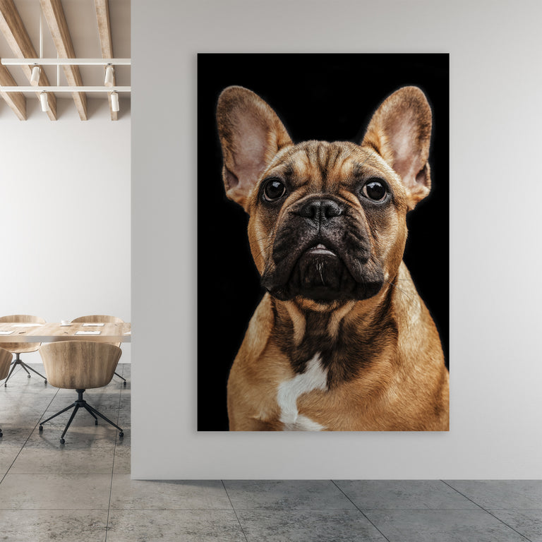 Maizie by Adam Mowery | stretched canvas wall art