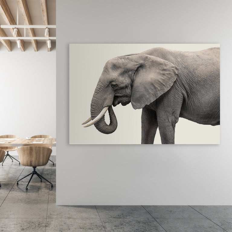 Elephant III by Adam Mowery (Canvas Wall Art)