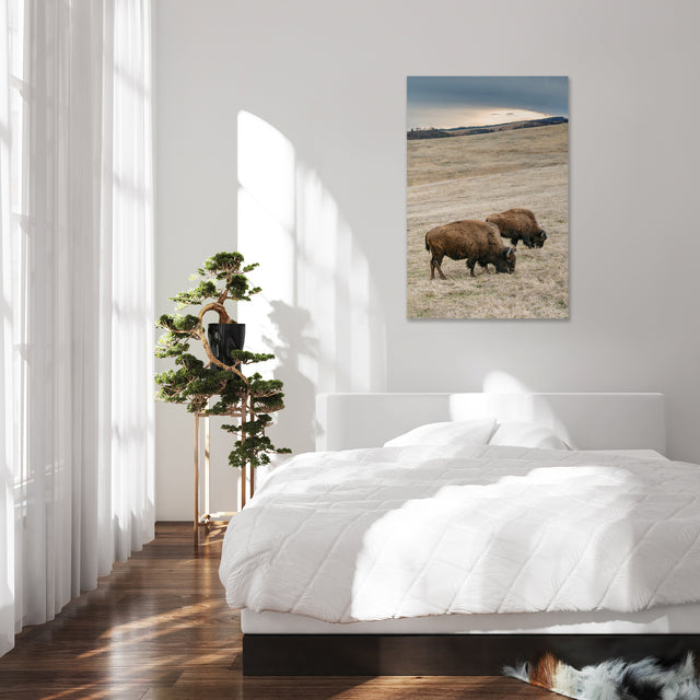 Home on the Range by Adam Mowery | stretched canvas wall art