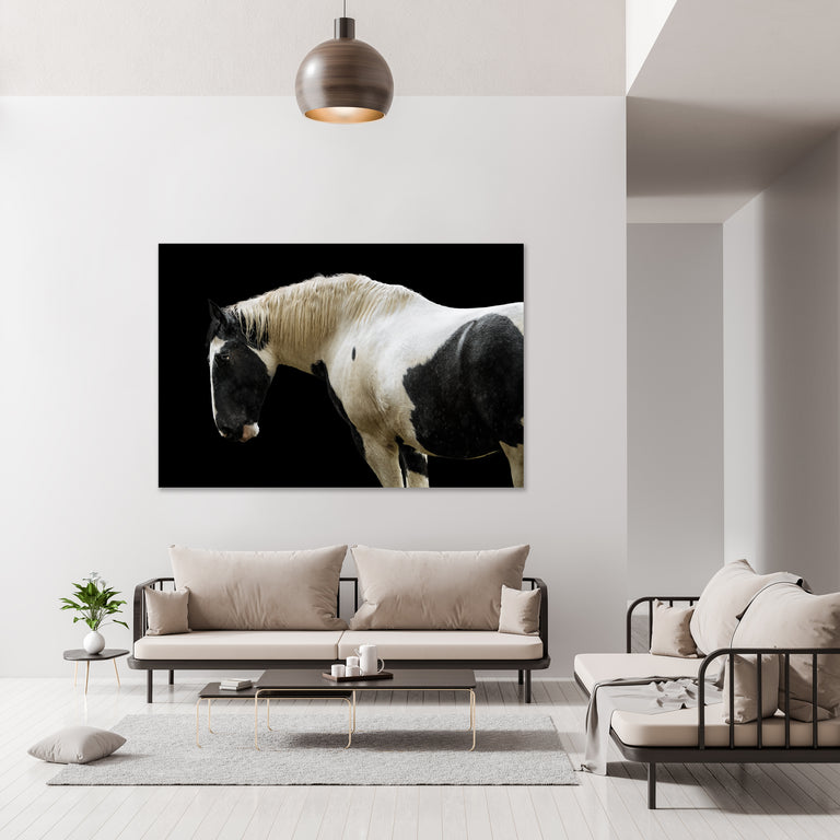 Trusted Steed by Adam Mowery | stretched canvas wall art