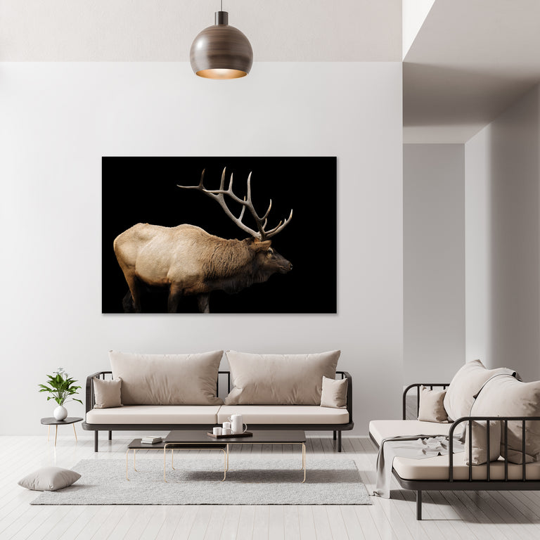 The Rut by Adam Mowery | stretched canvas wall art