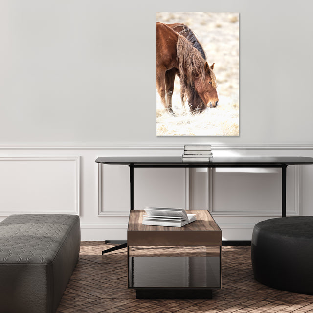 Mane Story by Curt & Stacy Howell | stretched canvas wall art