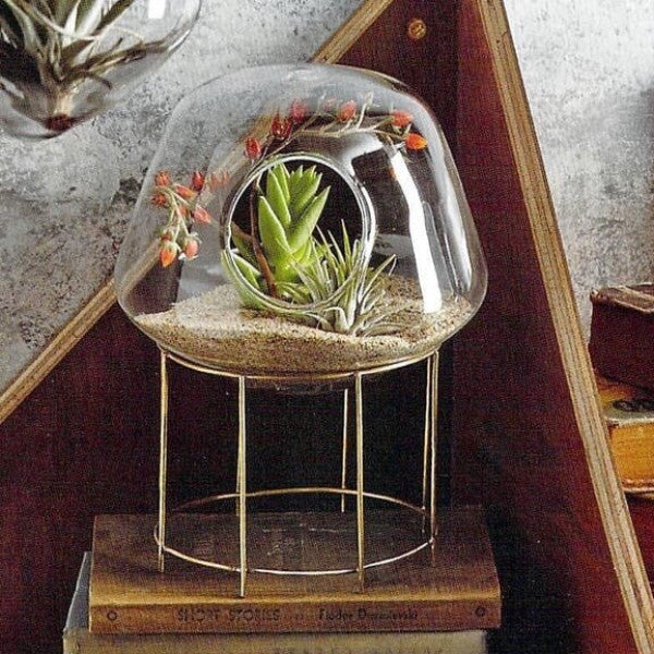 IGLOO TABLETOP TERRARIUM