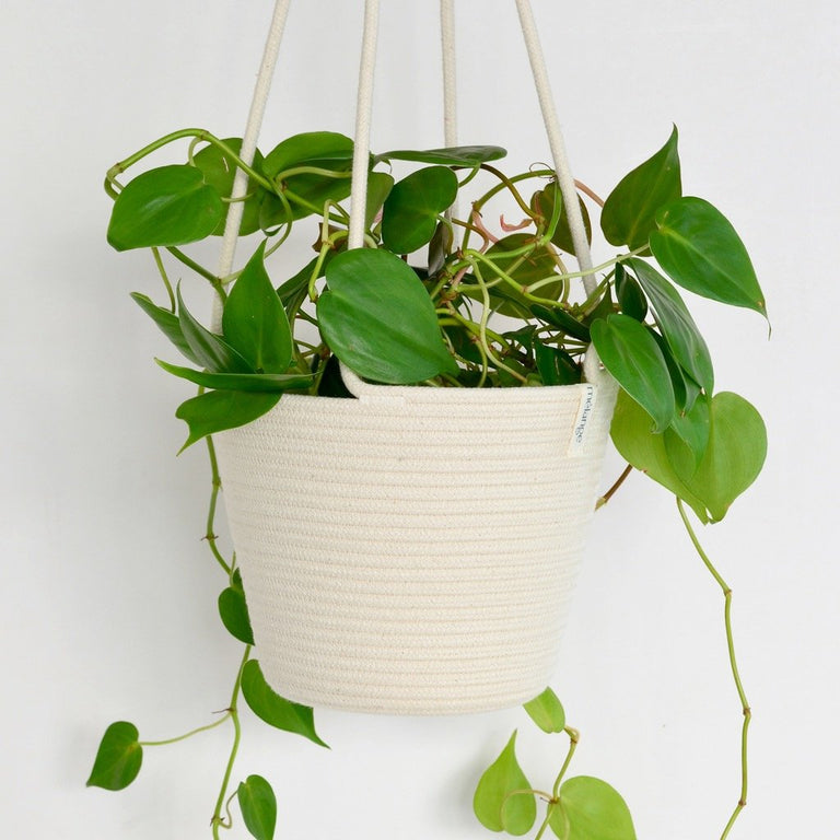 IVORY COTTON HANGING PLANTER (SOUTH AFRICA)