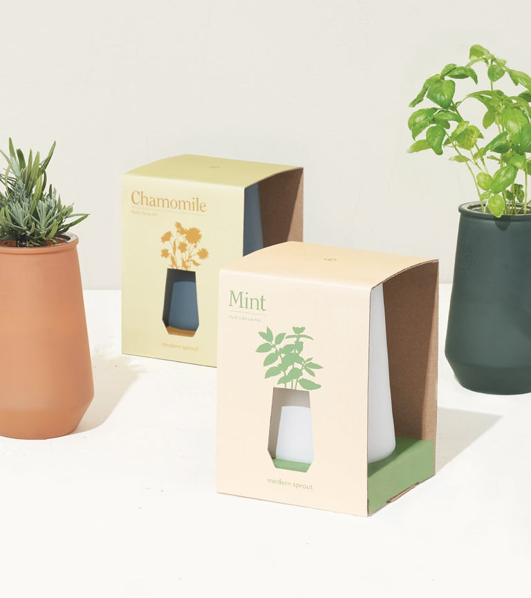 TAPERED HERB VASES