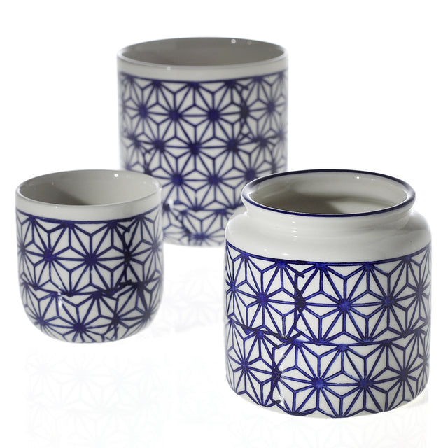 BLUE STAR FLOWER POTS