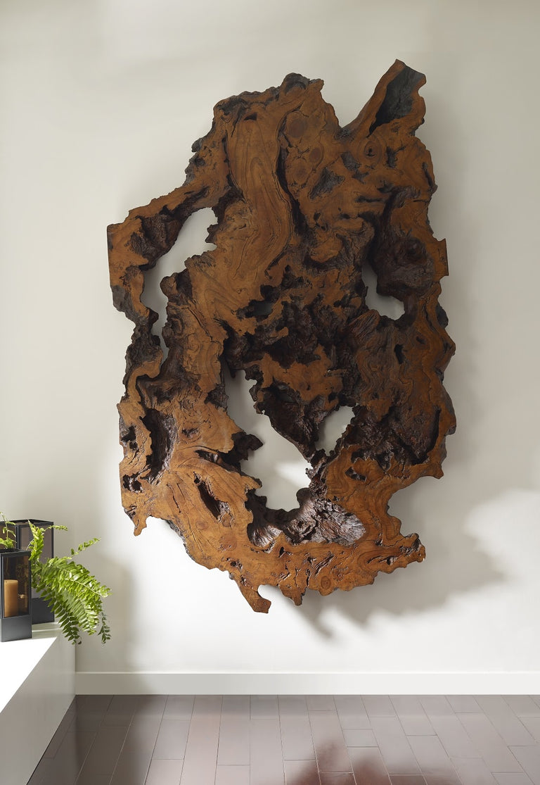 BURLED ROOT WALL DECOR