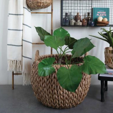 WATER HYACINTH HANDLED BASKET SET