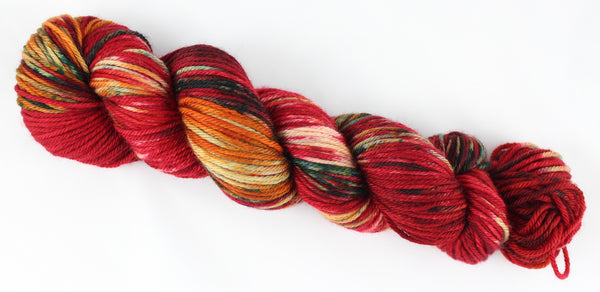 Salsa Adore Worsted