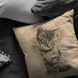 Cat Pillow | Rustic Renaissance Sketch Drawing Antique Style Throw Pillow or Zip Cover | Earth Tone Beige Brown Living Room Decor