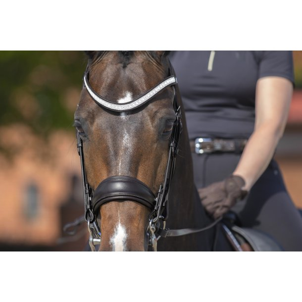 SD Design Santana Double Bridle