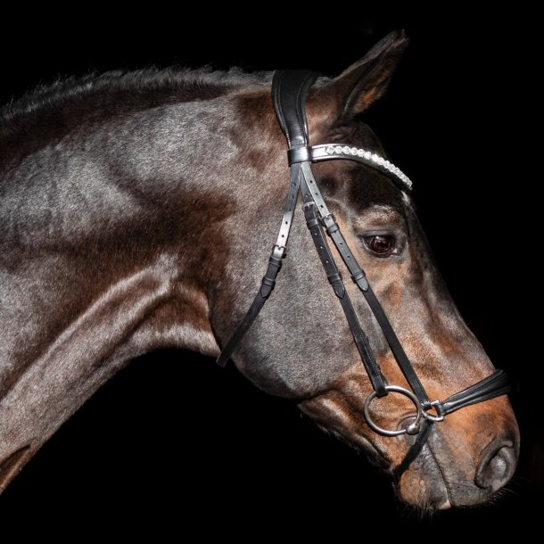 SD Design Indino Dropnose Bridle