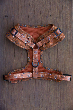Pablo & Co Adjustable Wild in the Desert Harness