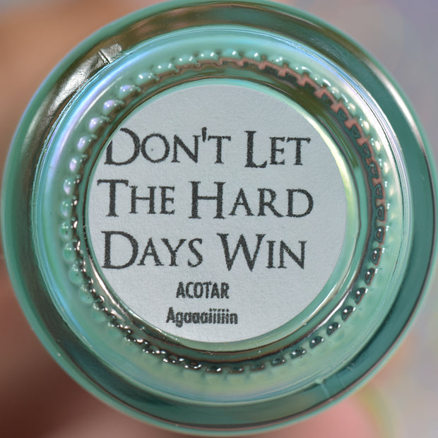 *Preorder* Let the Hard Days Win