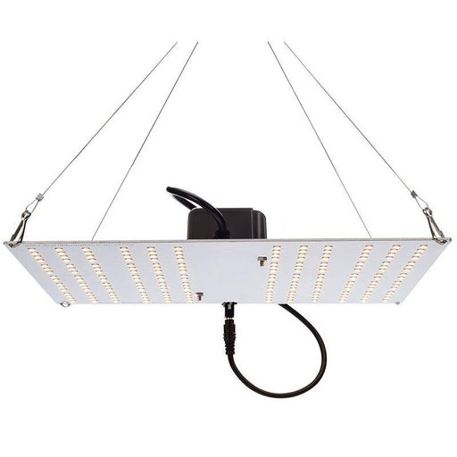 Horticulture Lighting Group HLG 100 V2 Quantum Board QB192