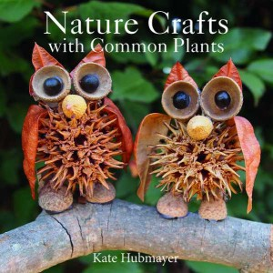Nature Crafts using Common Plants
