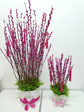 Prosperity Pink Pussy Willow Bloom Box (S)