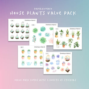 House Plants Value Pack