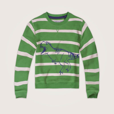 Dinosaur Crew Neck Striped Sweat Shirt - Klashcollection.com