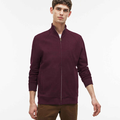 Zimano Raglan Sleeve Stand Collar Zipper Jacket - Klashcollection.com