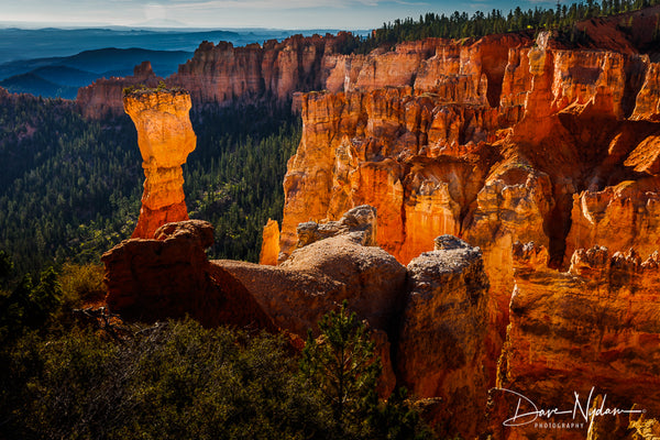 Bryce Canyon Hoodoo at Sunset