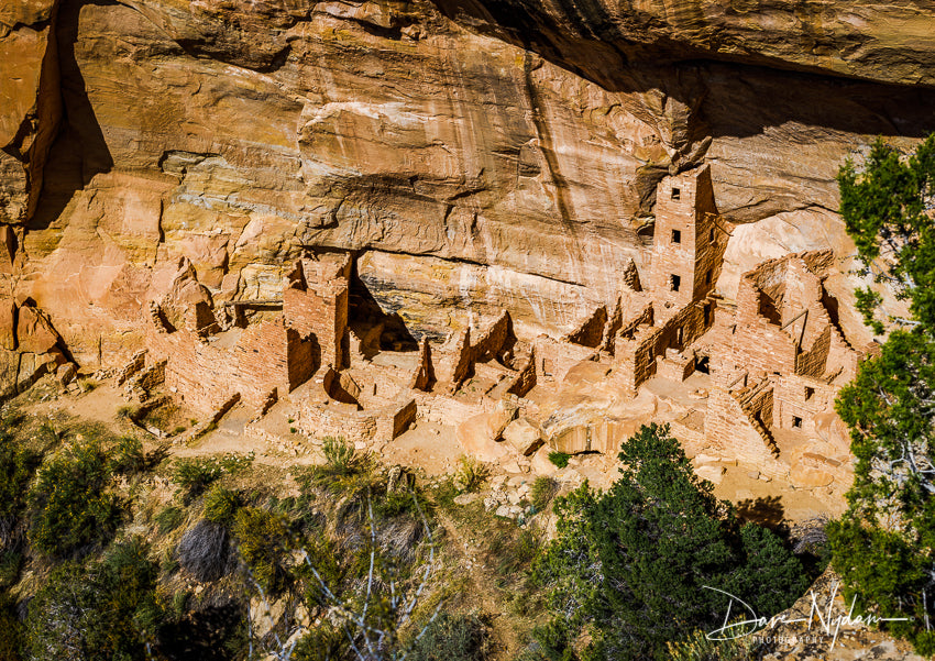 Image of Ancient Homestead in Mesa Verde National Park