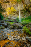 Waterfall with Bridge and Golden Creek Photograph as Limited Edition Fine Art Print