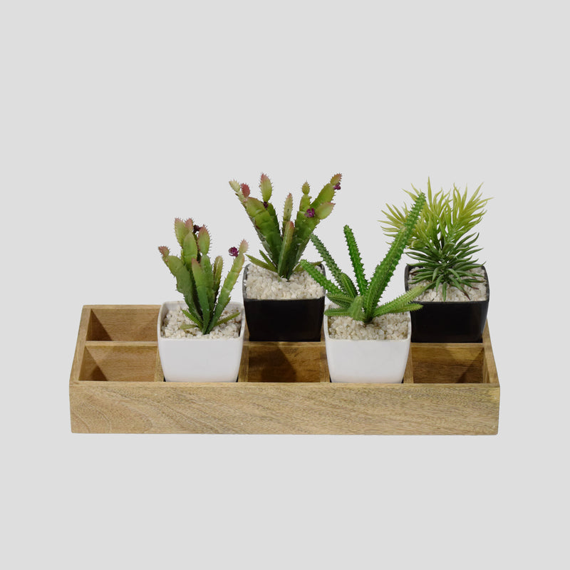 Flower pot organizer