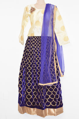 Gagra/Lehenga-Croptop/Cheniya-Choli--Silk-top-with-Velvette lehenga-with Dupatta(Netted)