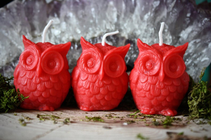 Mini Owl Candles