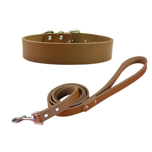 Leather Dog Collar and Leash Set - Fur Pants