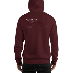 Define Your Sign Unisex Hoodie (Aquarius)