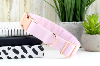 solid blush pink dog collar