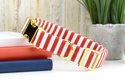 Striped Dog Collar - Red & White