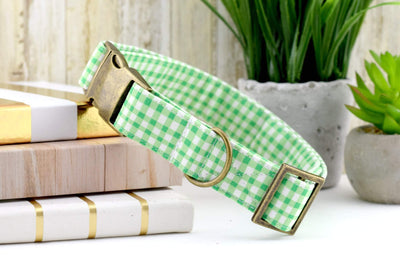 Painted Gingham Dog Collar - Leaf Green & White