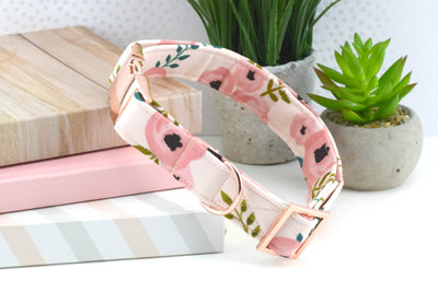 Watercolor Floral Dog Collar