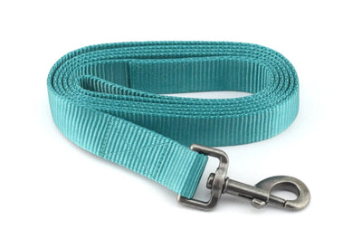 Nylon Webbing Leash - Teal