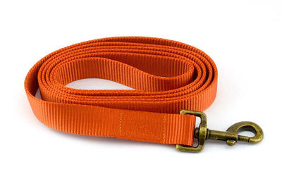 Nylon Webbing Leash - Burnt Orange